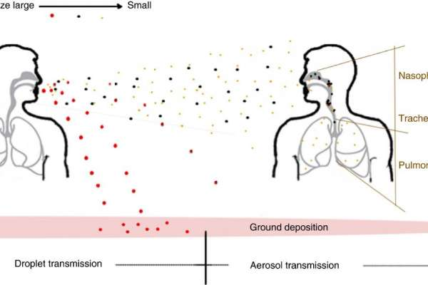 illustration of virus particles